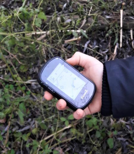 Eine Hand hält ein GPS-Gerät über Waldboden. (c) Fotografin: Michaela Kempter