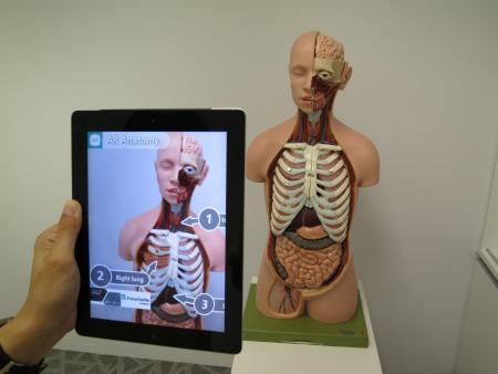 Ein anatomisches Modell eines menschlichen Körpers, davor wird ein Tablet-Computer gehalten, der weitere Infos dazu anzeigt.